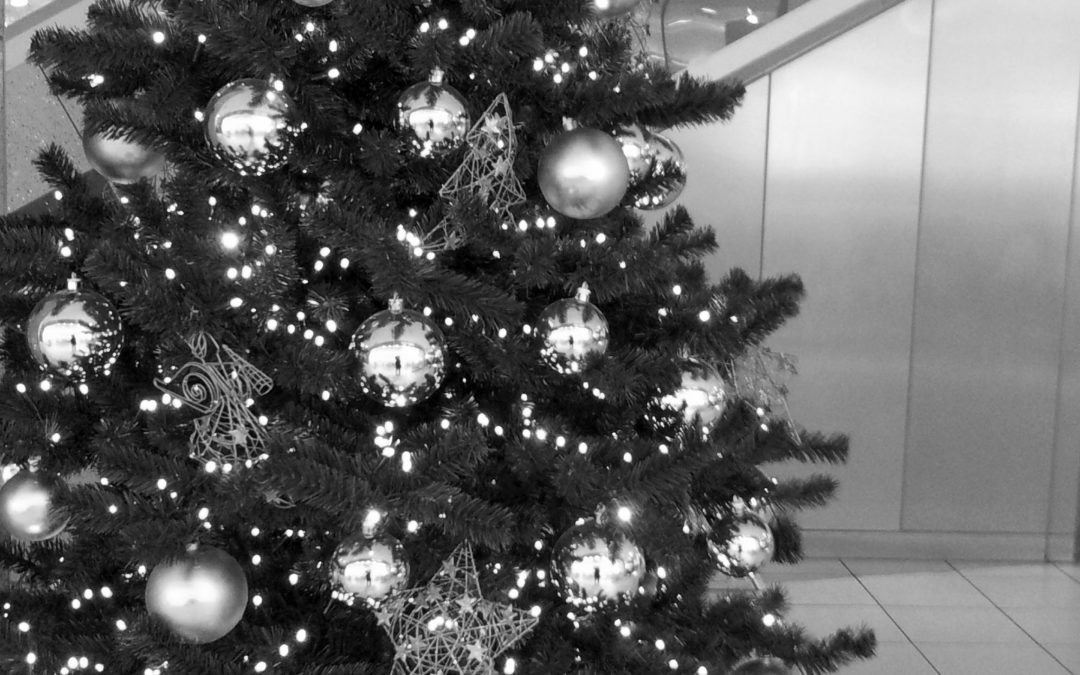 Kurz vor Weihnachten: 12 Buchempfehlungen